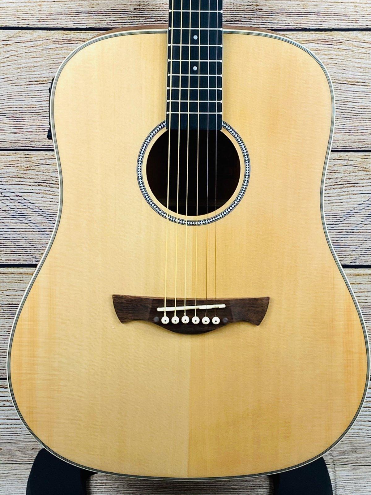 Tagima TW 25 EQ-NTS Dreadnought  Acoustic electric Guitar