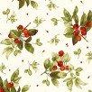 Bountiful - Berries