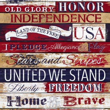 24 I Pledge Allegiance - Panel