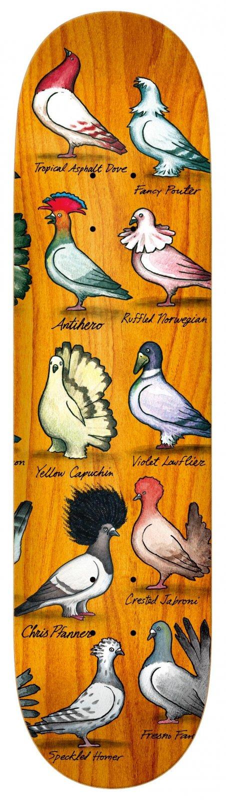 Anti Hero Pfanner Show Pigeons Skateboard Deck 8.06