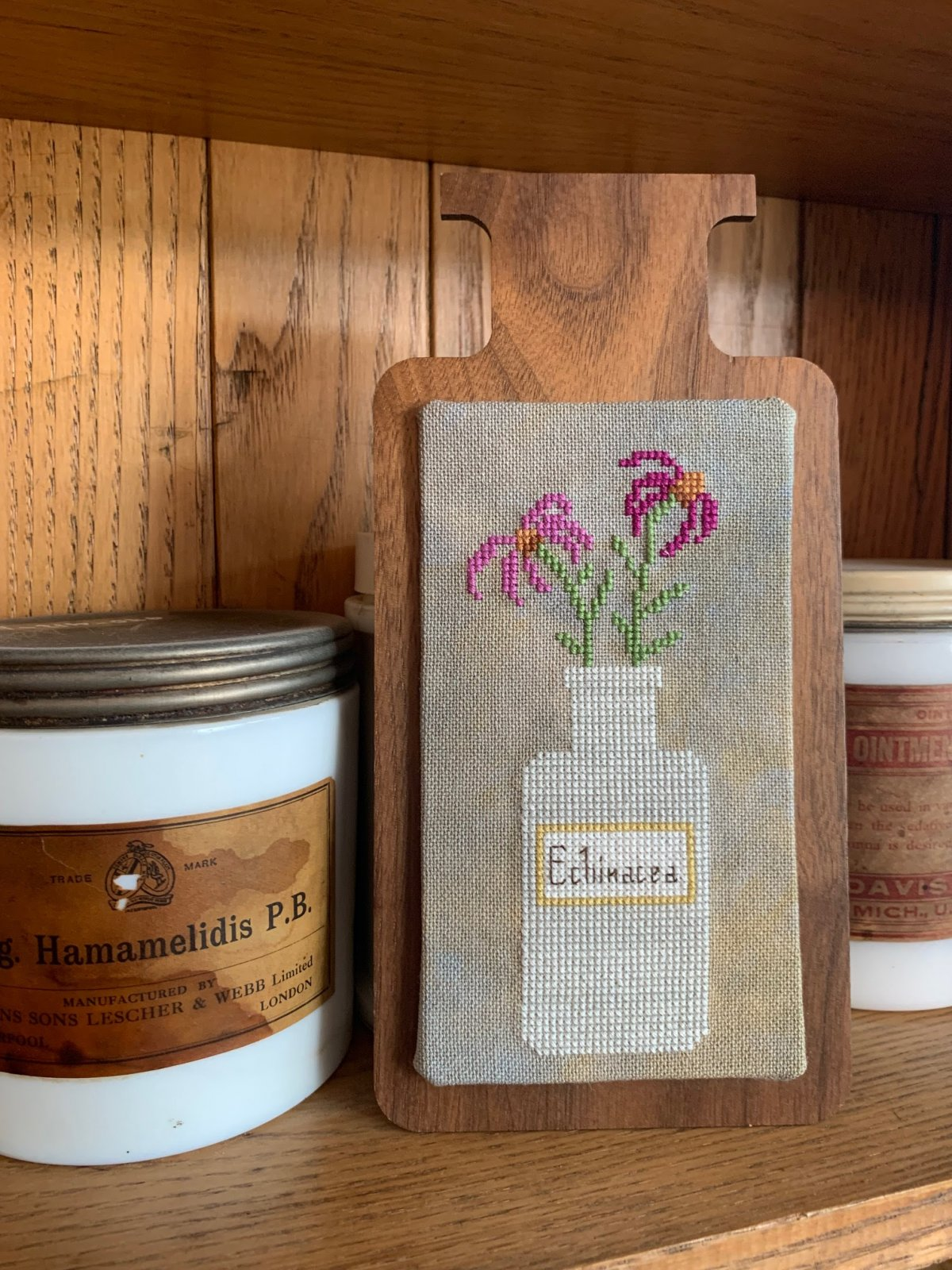 Perennial Potions:  Echinacea chart - Darling & Whimsey
