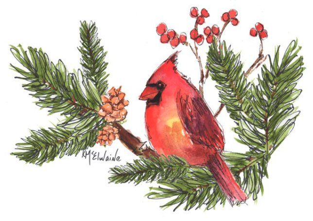 Intermediate How to Watercolor Paint Red Bird Cardinal BD149 Watercolor Class Video