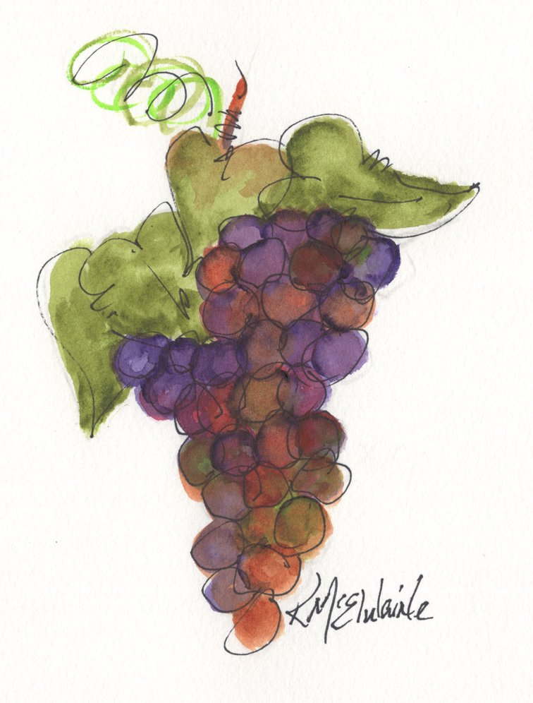 Beginners 6th Watercolor Painting Video Class Grape Cluster FL125