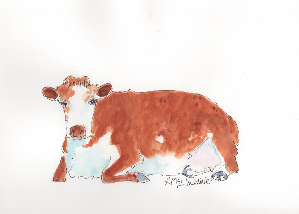 A Good Cow White Faced Hereford 9x12 AN127 Watercolor by Kathleen McElwaine os300