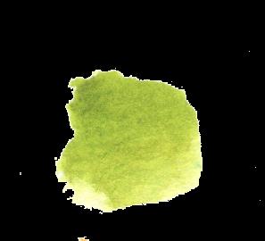 Green Gold Daniel Smith Watercolor