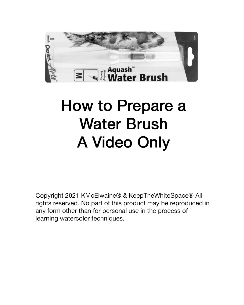 1st Class How to Prepare a Water brush Video WBV101