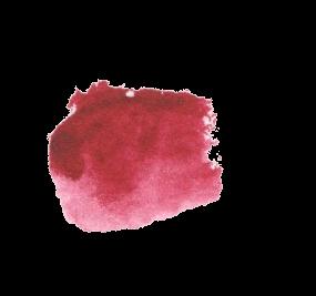 Quinacridone Violet Daniel Smith Refill