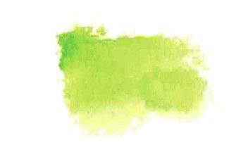 Pthalo Yellow Green Daniel Smith Refill