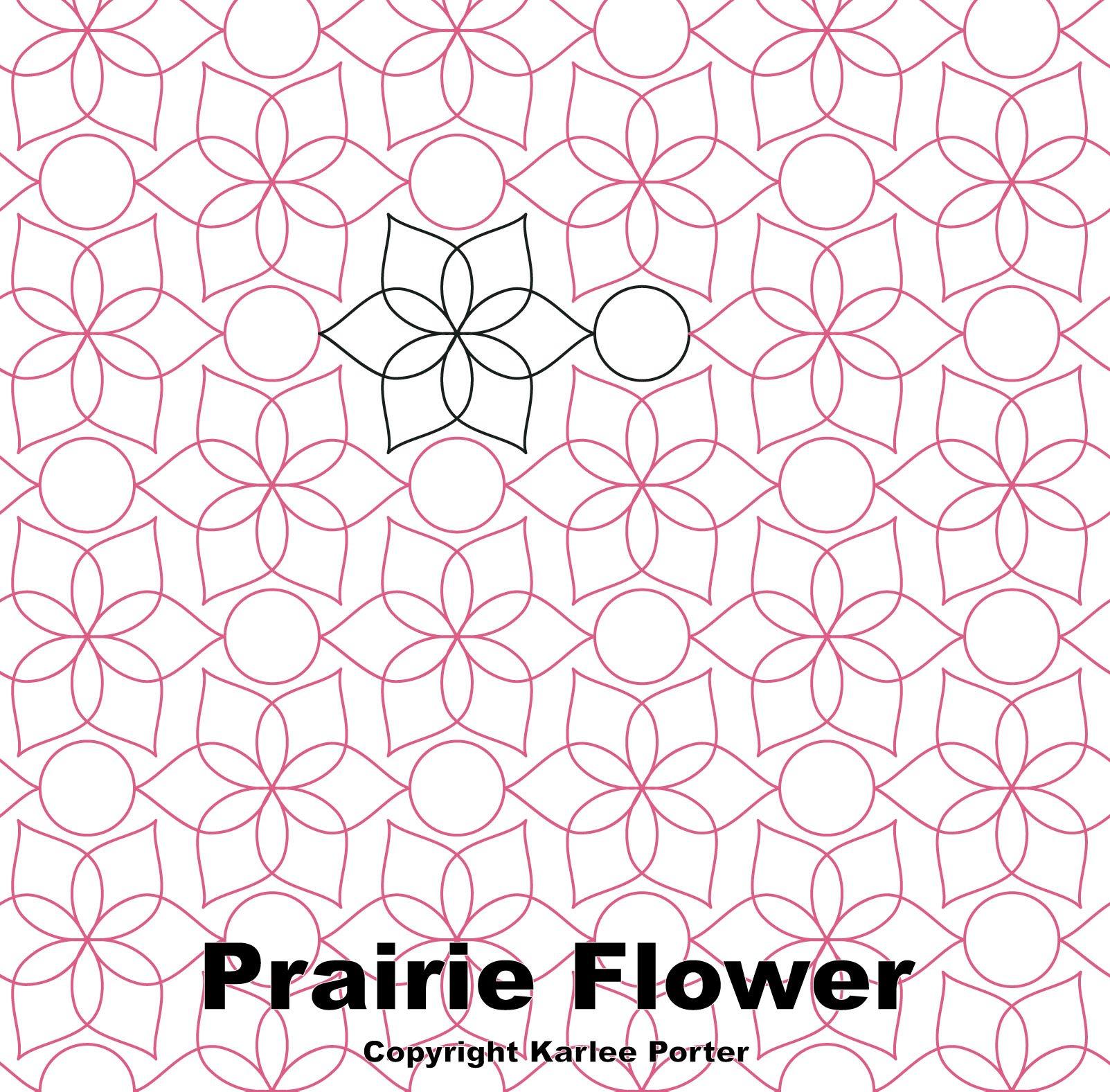 KP Prairie Flower