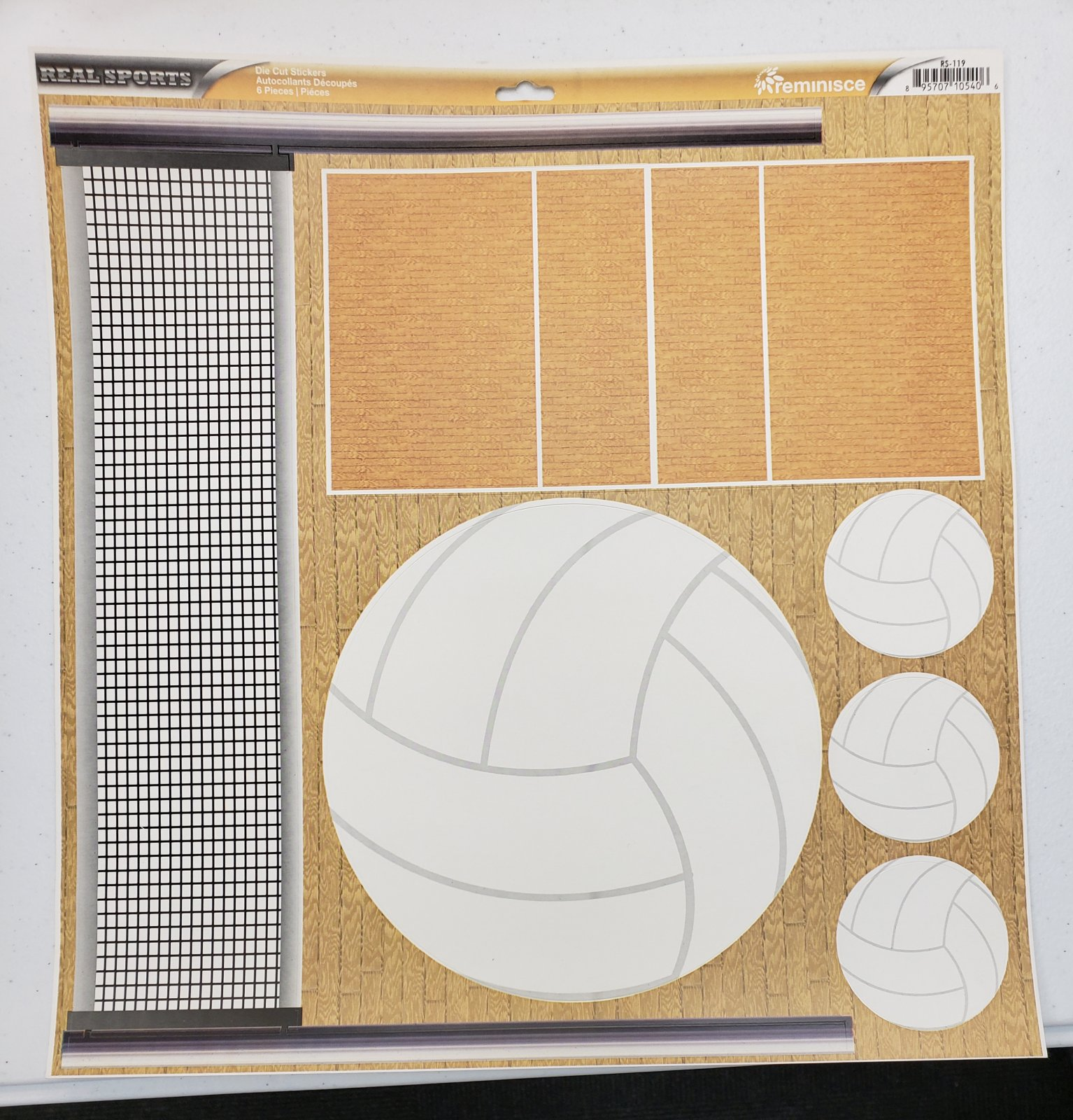 Reminisce Volleyball 12x12