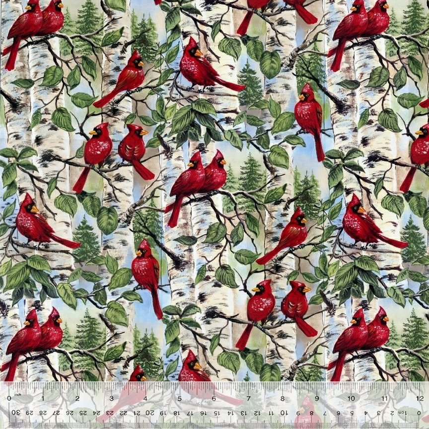 Cardinals in Birch Trees