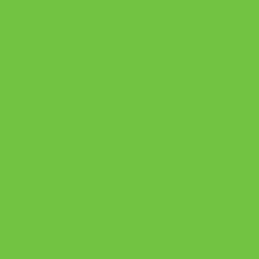 Lime Green Fleece