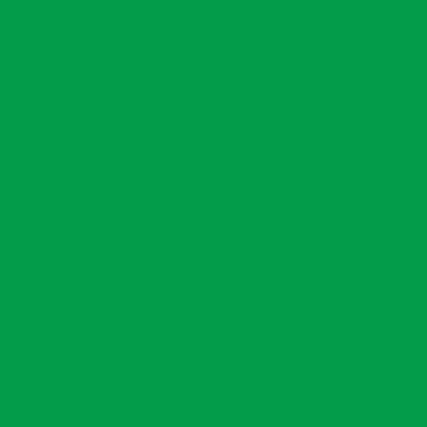 Christmas Green Velour Fleece