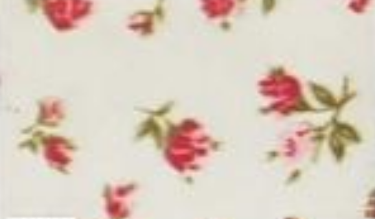 Small Red Flowers on Ivory