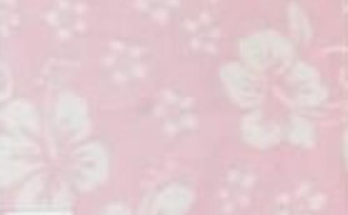 Hibiscus on Light Pink