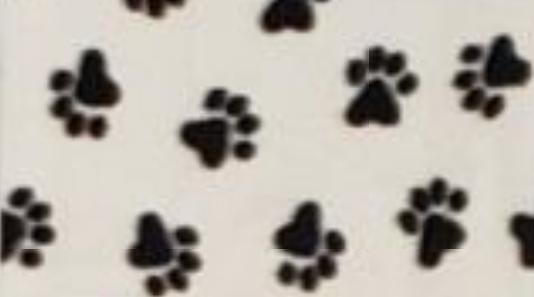 Black Paw Prints on White