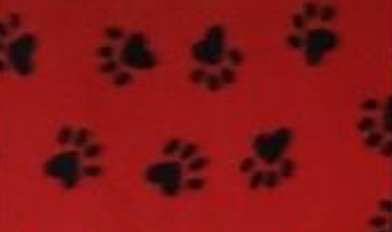 Black Paws on Red
