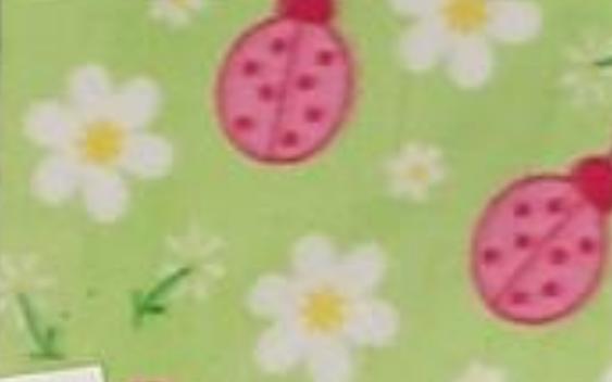 Pink Ladybugs on Green