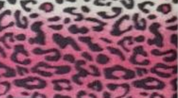 Leopard with Pink