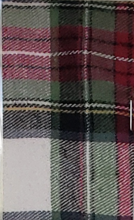 Green and Red with White Stripe Plaid