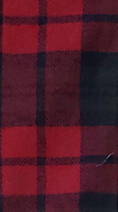 Red and Black Medium SIzed Plaid Print