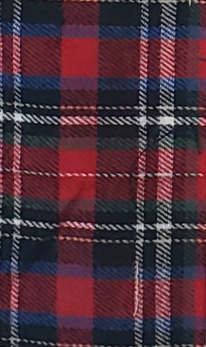 Red, White and Blue Plaid with small squares