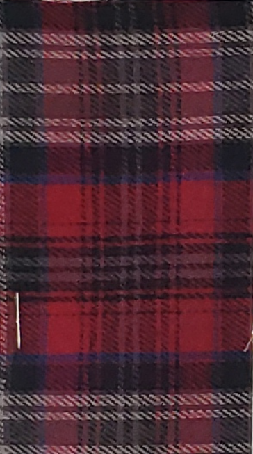 Blue and Red Plaid