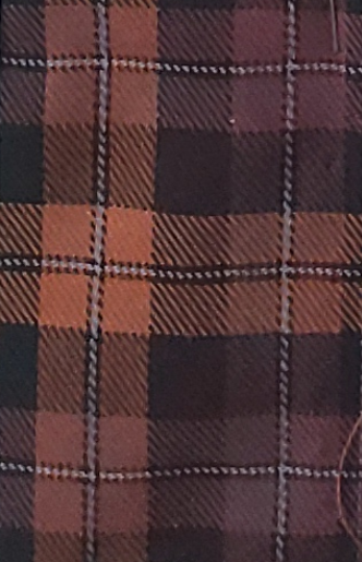 Browns of Multiple Shades Plaid