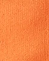 Orange Sweatshirt Fleece