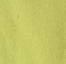 Light Green Sweatshirt Fleece
