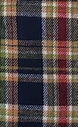 Multi Colored Plaid