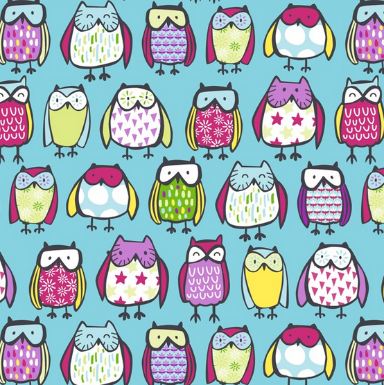Owls on Turquoise