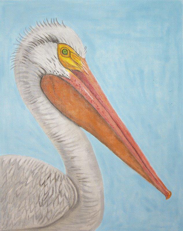 CL3645 White Pelican on Aqua