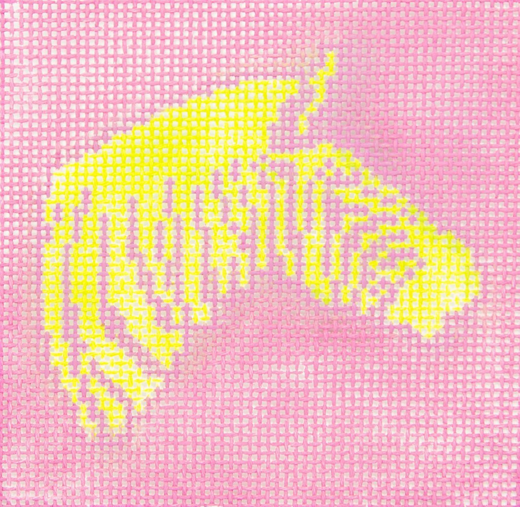 KKSS9 Zebra Lime Green on Hote Pink Chris Lewis Distributing