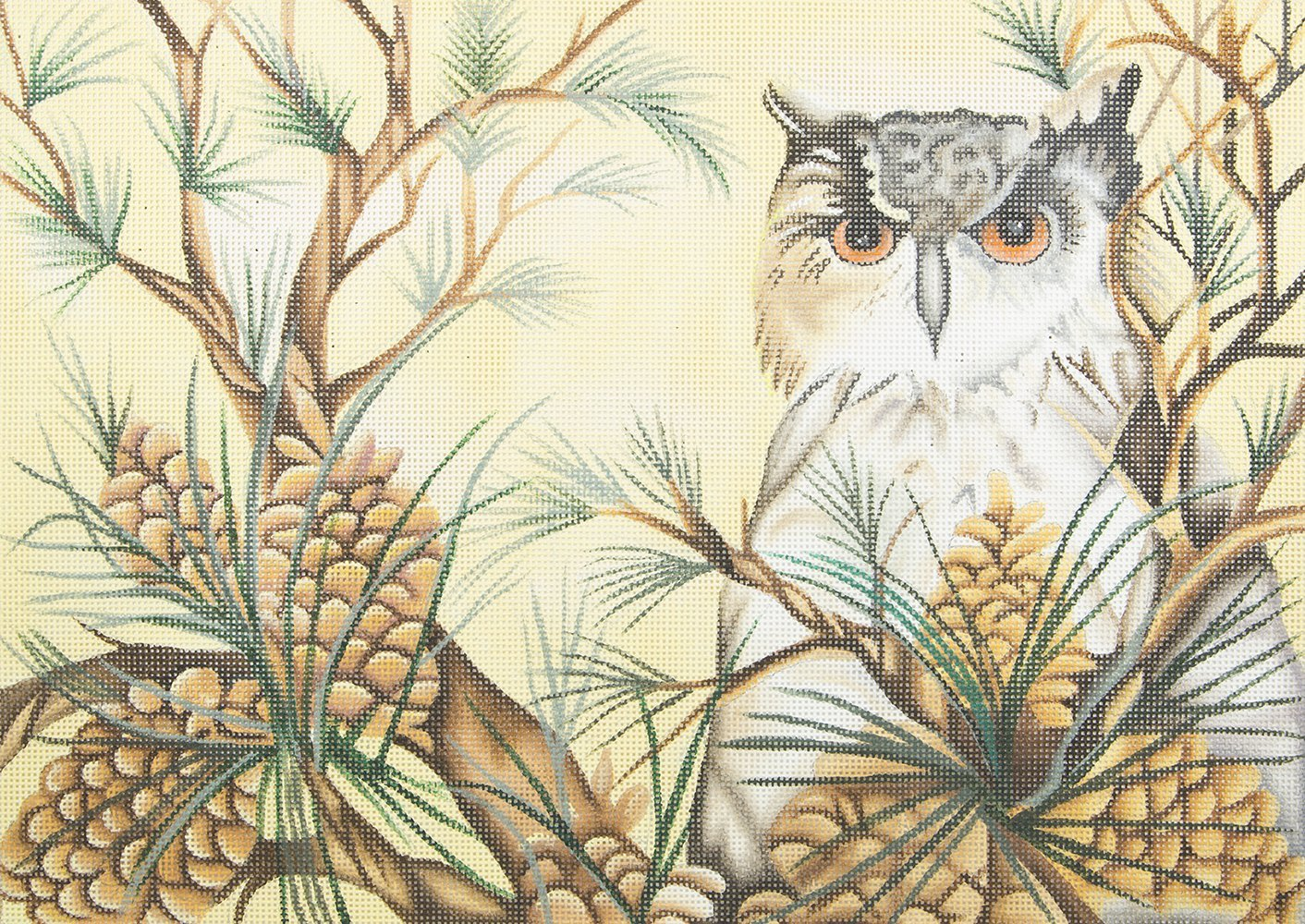 JG1005 Owl in Pine Tree Susan Roberts