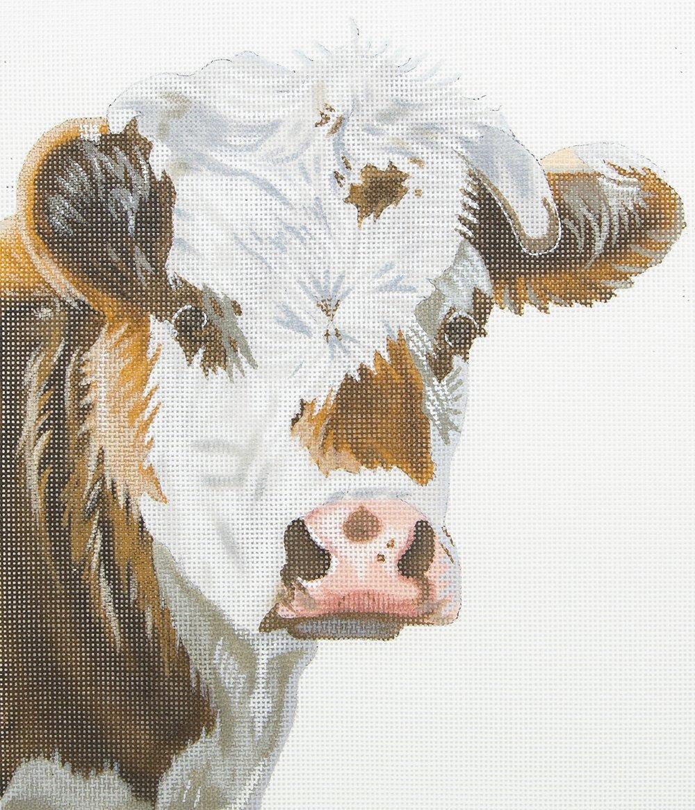 LGDP516 Cow Portrait Susan Roberts