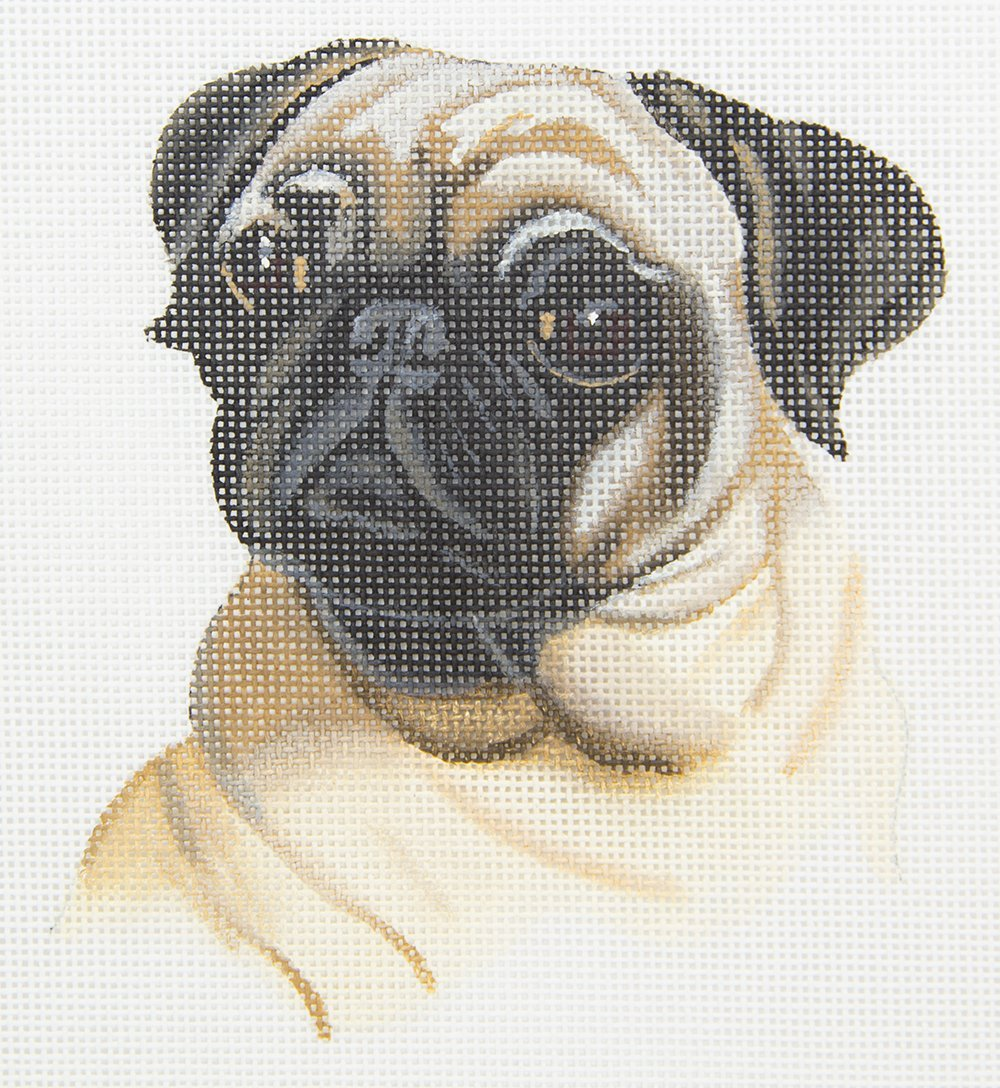 TTASP209 Pug Pup Susan Roberts