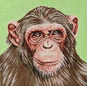 C450r Monkey Chimp Portrait The Meredith Collection