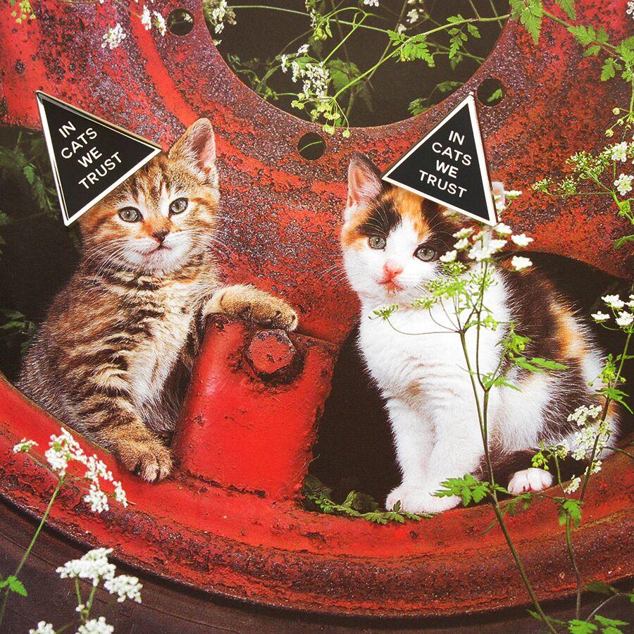 In Cats We Trust Enamel Pin