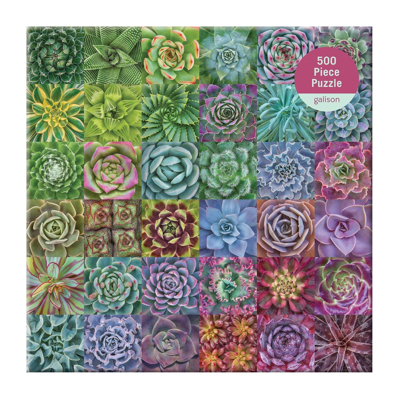 Succulent Spectrum Puzzle