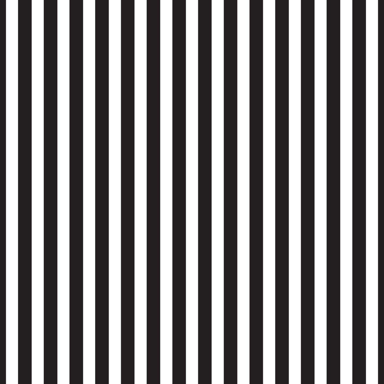 Pirate Tales Stripes Black