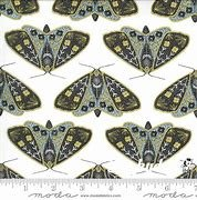 Dwell Possibility Dainty Moth-Ivory Sky