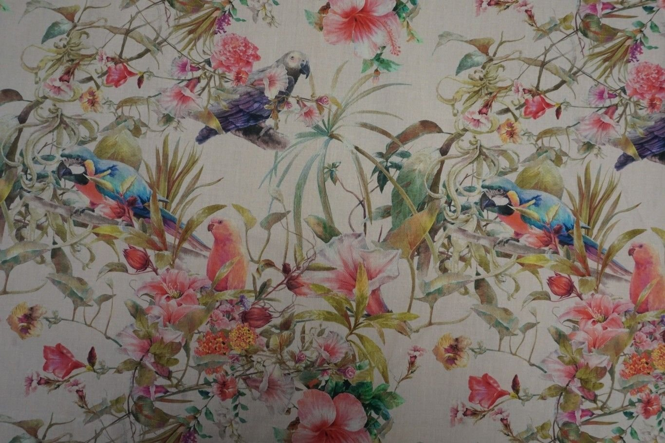 Lady McElroy Cotton Lawn - Parrotdise