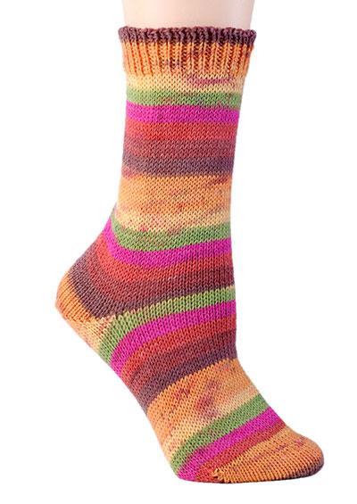 Berroco Comfort Sock Yarn #1822 Akaro