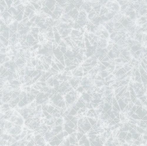Winter Shimmer Silver