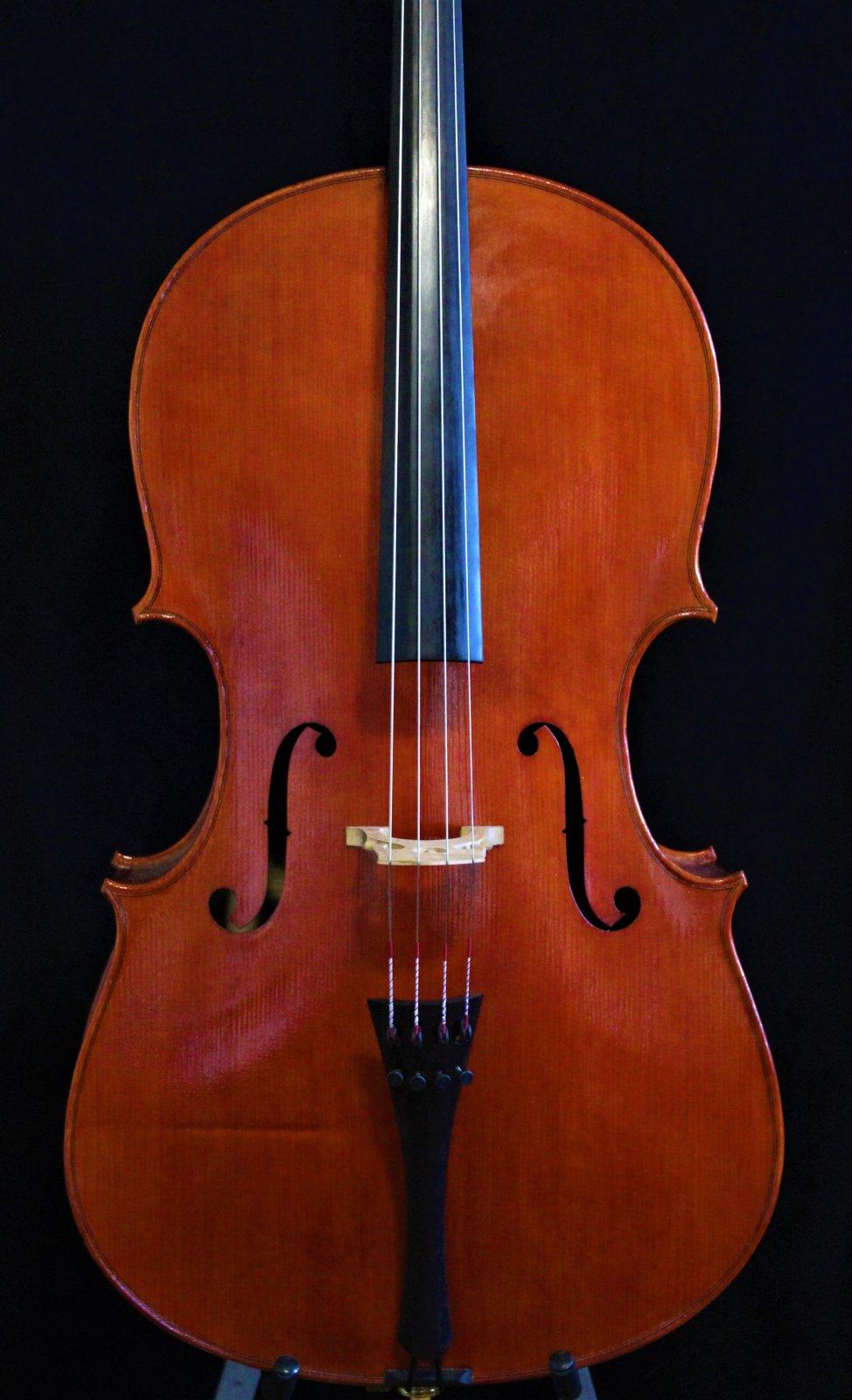 Joseph Ciccarelli Cello Goffriller ca. 2021