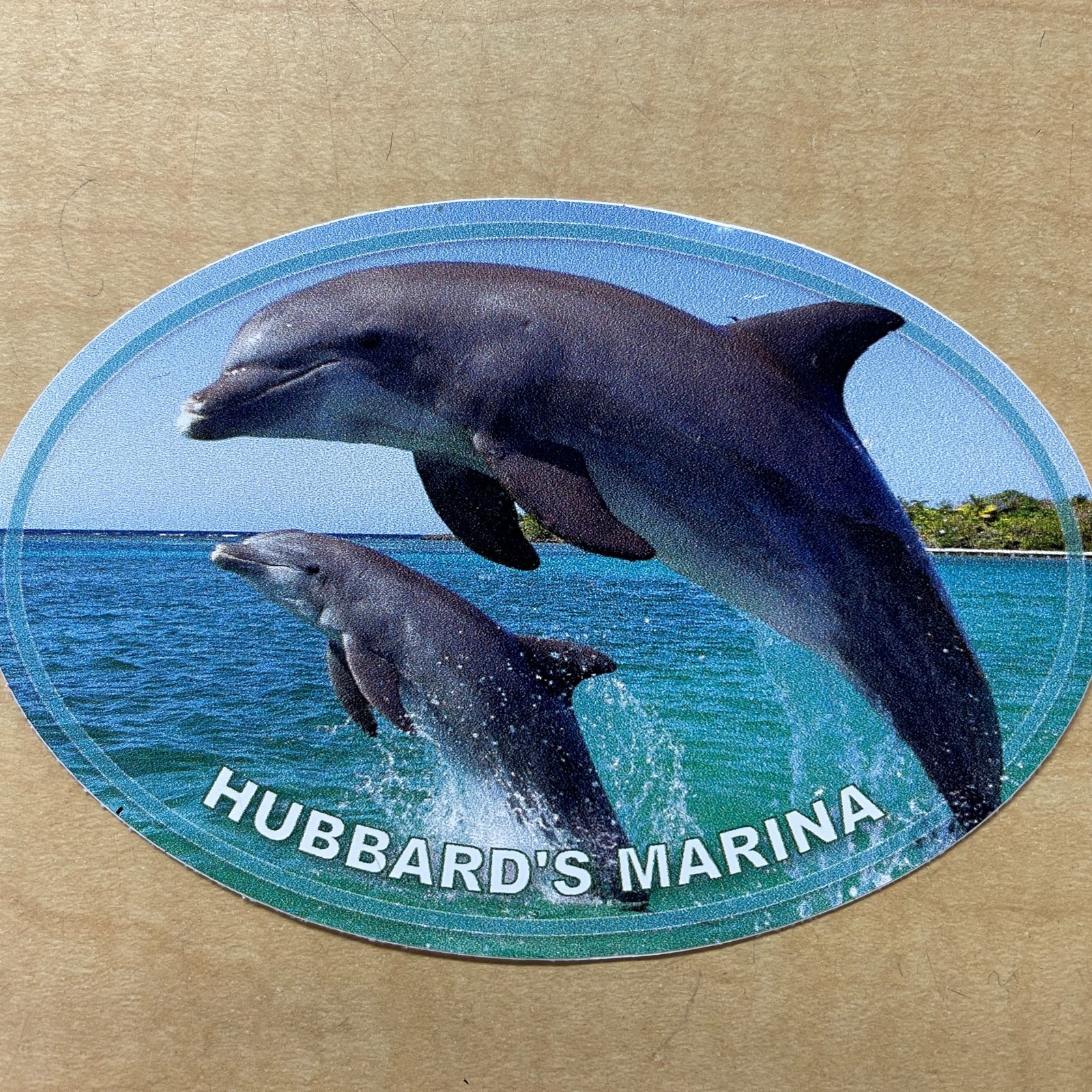 HM oval decal - dolphins jumping photo (small)