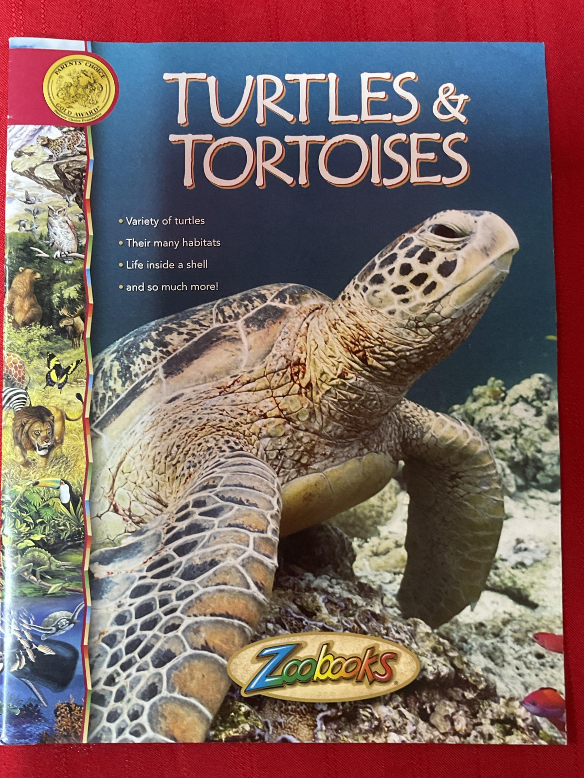 Zoobooks Turtles and Tortoises