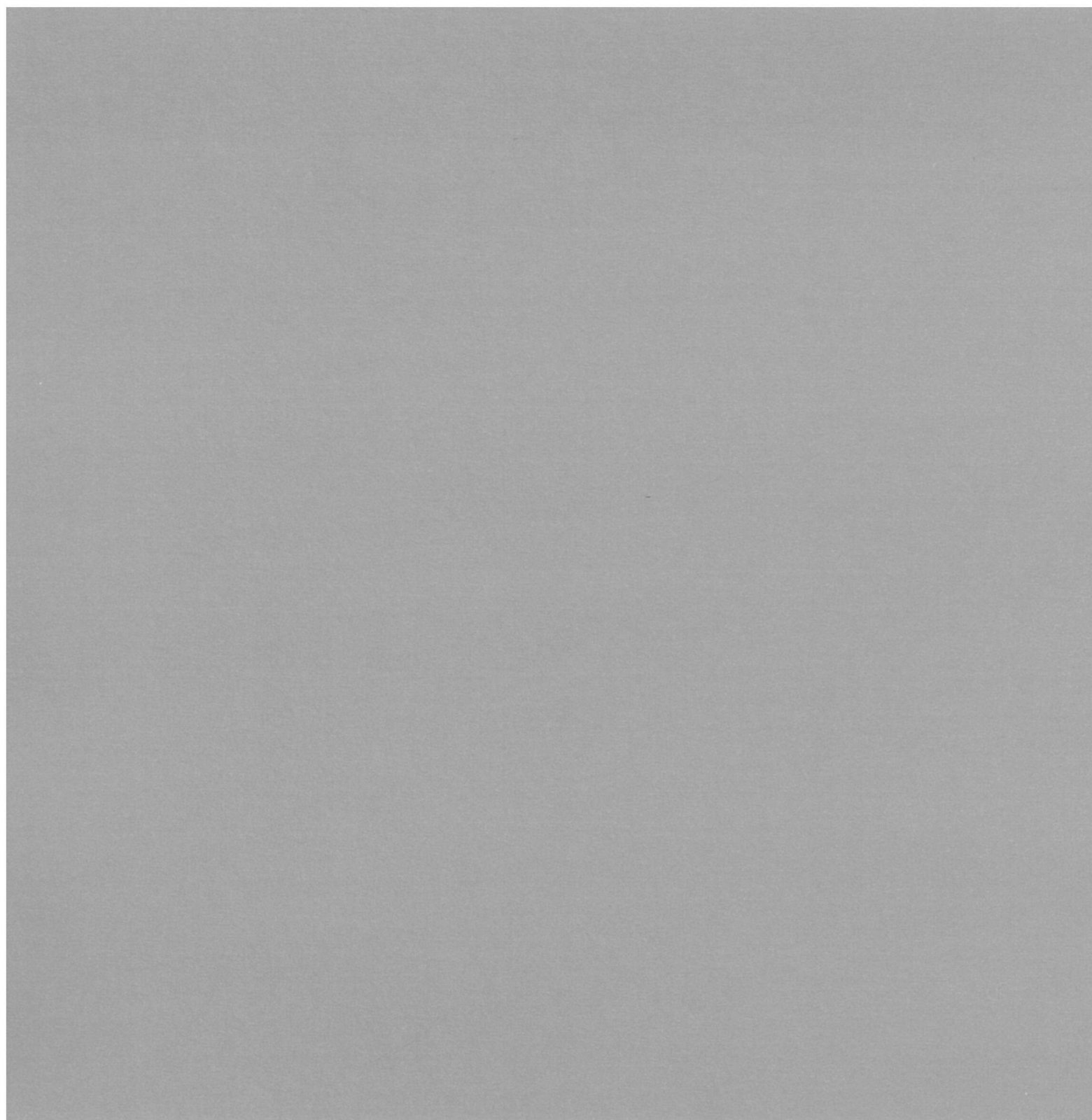 AC Cardstock 12X12 doux/lisse Cendre 80lbs - Smooth Cardstock, Ash Item # 71765