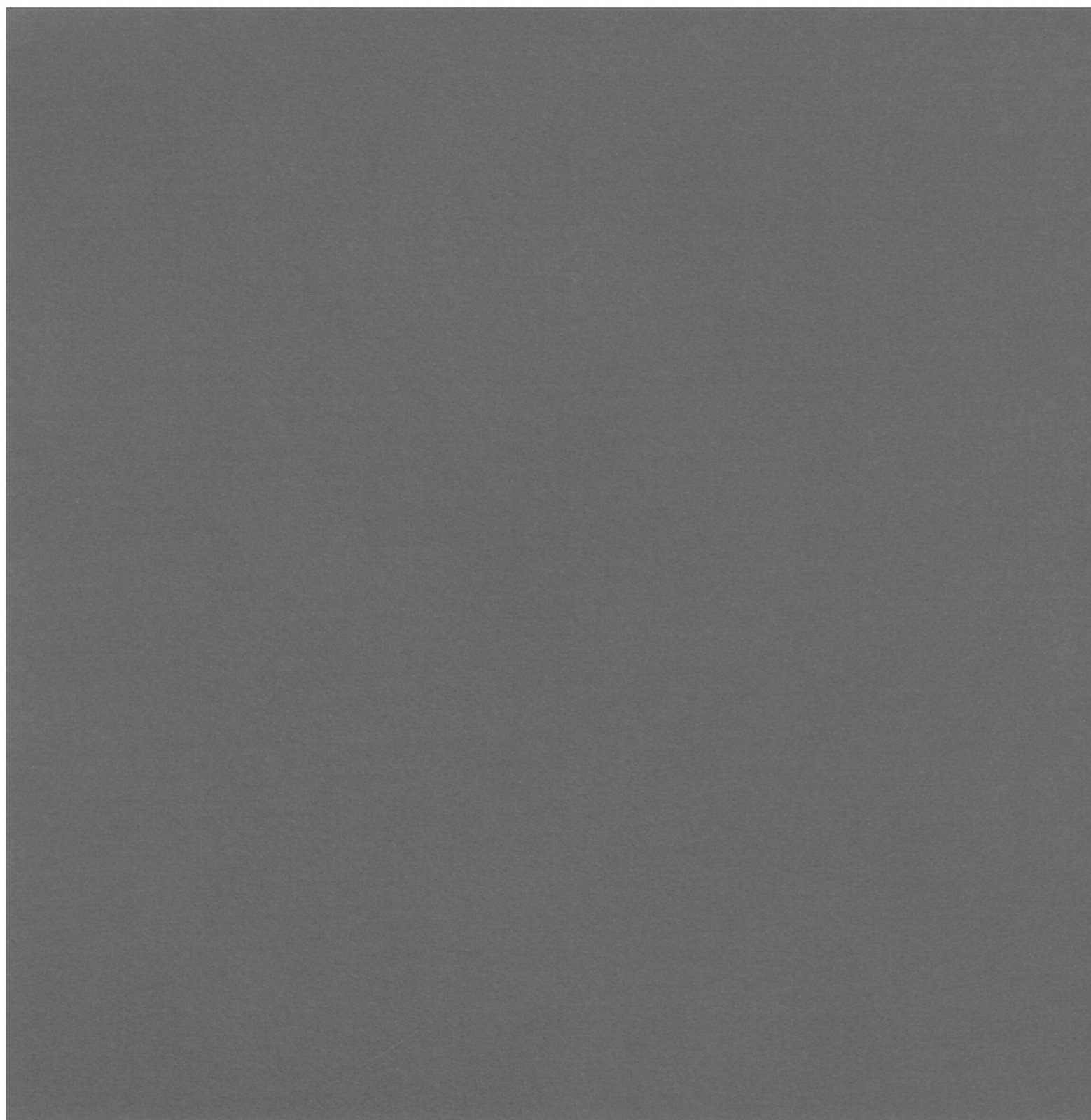 AC Cardstock 12X12 doux/lisse Charbon 80lbs - Smooth Cardstock, Charcoal Item # 71771